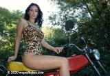 Leopard moped
