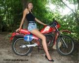 Dirtbike shy