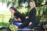 Moped friends
